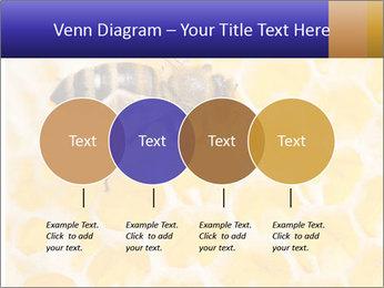 0000079822 PowerPoint Templates - Slide 32