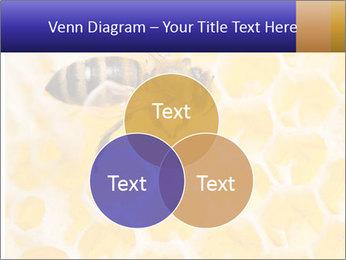 0000079822 PowerPoint Templates - Slide 33