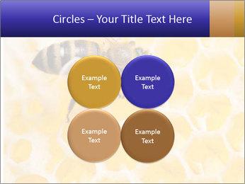 0000079822 PowerPoint Templates - Slide 38