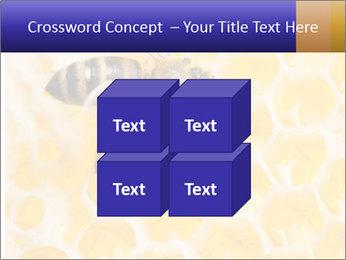 0000079822 PowerPoint Templates - Slide 39