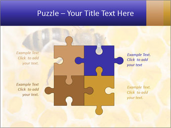 0000079822 PowerPoint Template - Slide 43