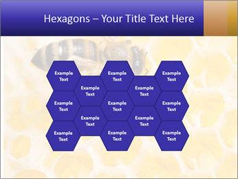 0000079822 PowerPoint Templates - Slide 44