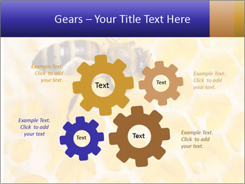 0000079822 PowerPoint Templates - Slide 47
