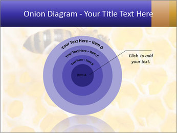 0000079822 PowerPoint Template - Slide 61