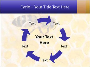 0000079822 PowerPoint Templates - Slide 62