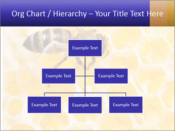 0000079822 PowerPoint Templates - Slide 66