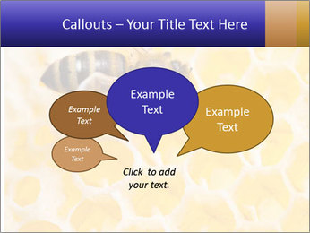 0000079822 PowerPoint Template - Slide 73