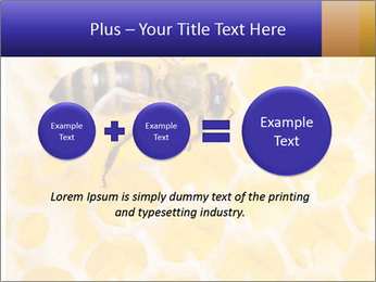 0000079822 PowerPoint Template - Slide 75