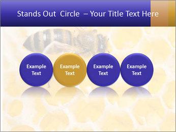 0000079822 PowerPoint Templates - Slide 76