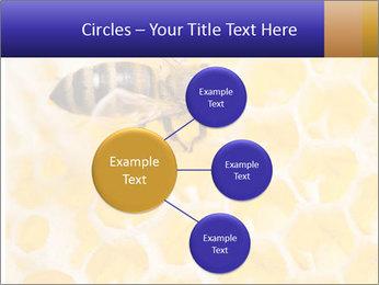 0000079822 PowerPoint Template - Slide 79