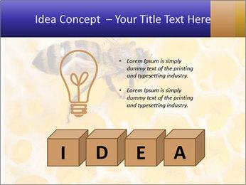 0000079822 PowerPoint Template - Slide 80