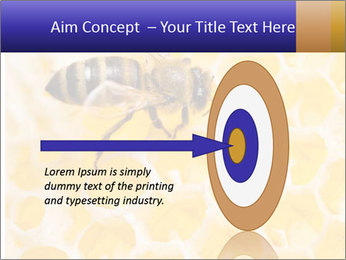 0000079822 PowerPoint Templates - Slide 83