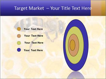 0000079822 PowerPoint Templates - Slide 84