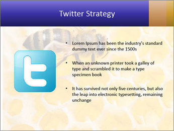0000079822 PowerPoint Template - Slide 9