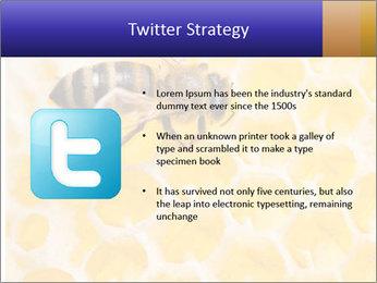 0000079822 PowerPoint Template - Slide 9