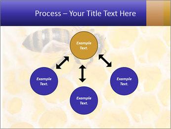 0000079822 PowerPoint Templates - Slide 91