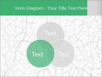 0000079824 PowerPoint Templates - Slide 33