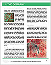 0000079824 Word Templates - Page 3