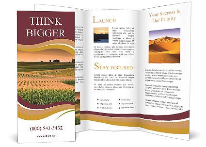 0000079826 Brochure Templates