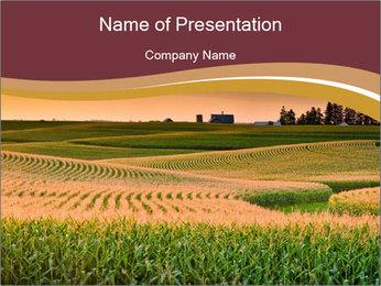 0000079826 PowerPoint Template - Slide 1