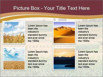 0000079826 PowerPoint Templates - Slide 14