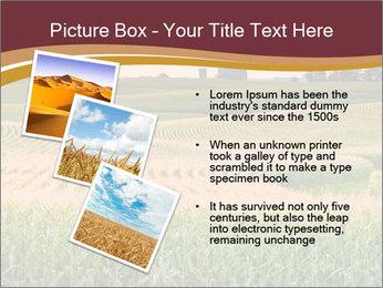0000079826 PowerPoint Templates - Slide 17
