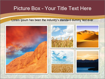 0000079826 PowerPoint Templates - Slide 19