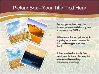 0000079826 PowerPoint Templates - Slide 23