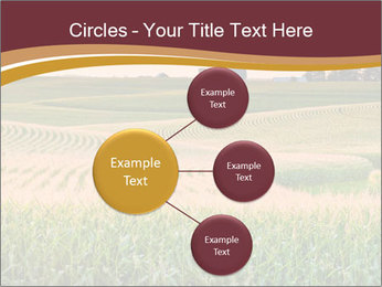 0000079826 PowerPoint Template - Slide 79