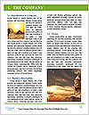 0000079827 Word Template - Page 3