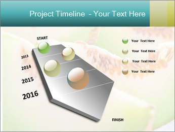 0000079831 PowerPoint Template - Slide 26
