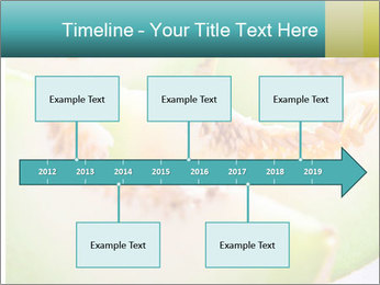 0000079831 PowerPoint Template - Slide 28