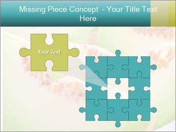 0000079831 PowerPoint Template - Slide 45
