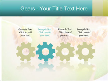 0000079831 PowerPoint Template - Slide 48