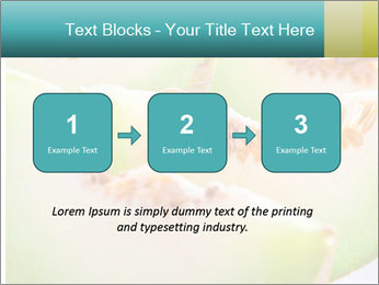 0000079831 PowerPoint Template - Slide 71