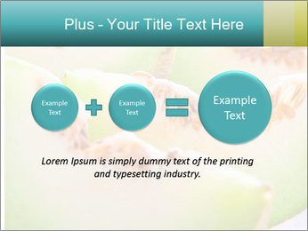 0000079831 PowerPoint Template - Slide 75
