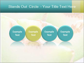 0000079831 PowerPoint Template - Slide 76