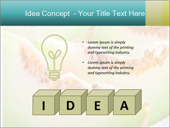 0000079831 PowerPoint Template - Slide 80