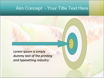 0000079831 PowerPoint Template - Slide 83