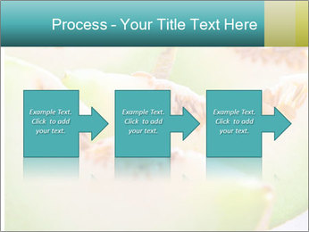 0000079831 PowerPoint Template - Slide 88