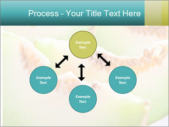 0000079831 PowerPoint Template - Slide 91