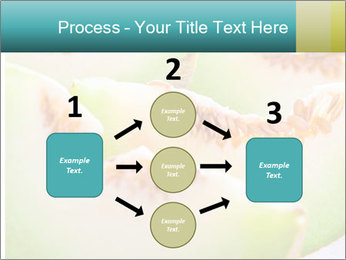 0000079831 PowerPoint Template - Slide 92