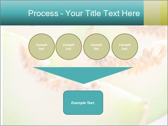 0000079831 PowerPoint Template - Slide 93