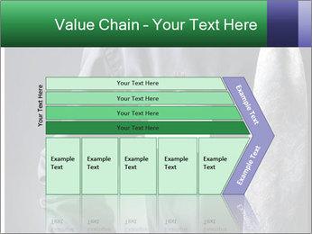 0000079835 PowerPoint Template - Slide 27