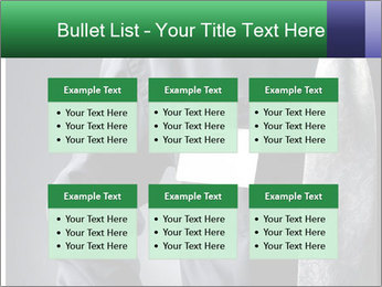 0000079835 PowerPoint Templates - Slide 56
