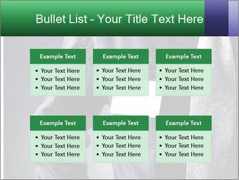 0000079835 PowerPoint Template - Slide 56