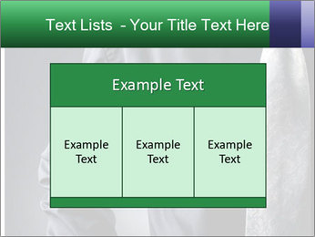 0000079835 PowerPoint Templates - Slide 59