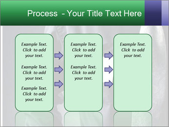 0000079835 PowerPoint Templates - Slide 86