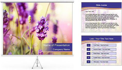 0000079836 PowerPoint Template
