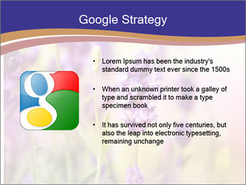 0000079836 PowerPoint Template - Slide 10